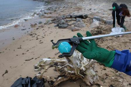 Greyhope Beach clean pic-2