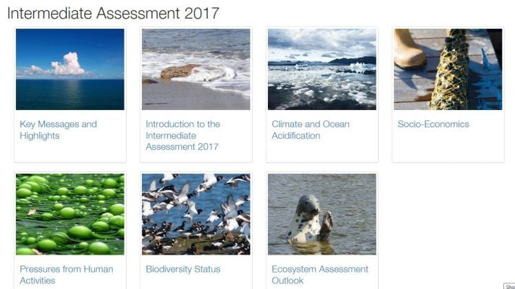 Intermediate Assessment 2017