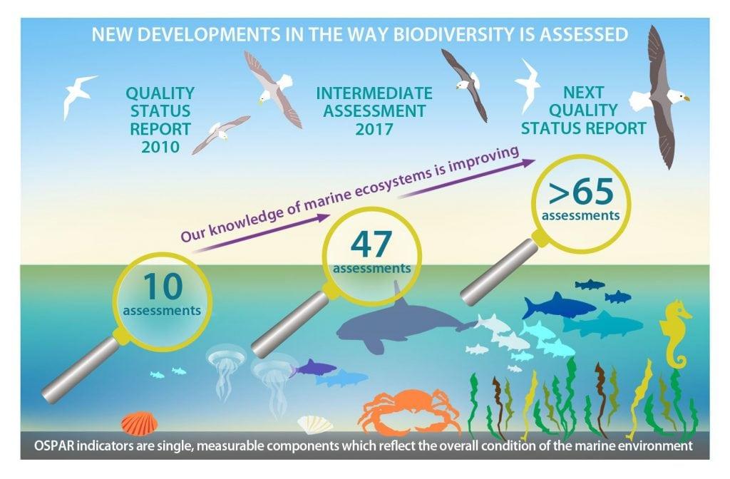 Biodiversity graphic