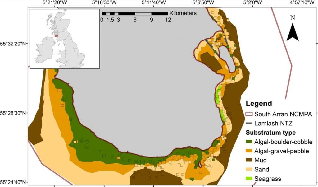 Landscape effects on demersal fish revealed by field observations and predictive seabed modelling