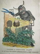 Caricature of Knox harvesting corpses