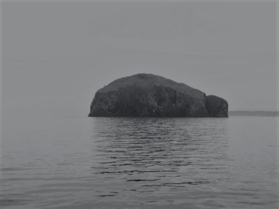 Bass Rock from survey 0119S
