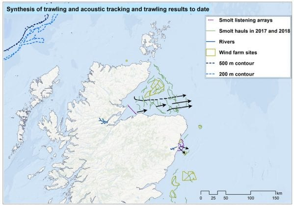 1419H Figure 1 Previous survey hauls in relation to wind farm sites of interest and some of the likely smolt migration routes