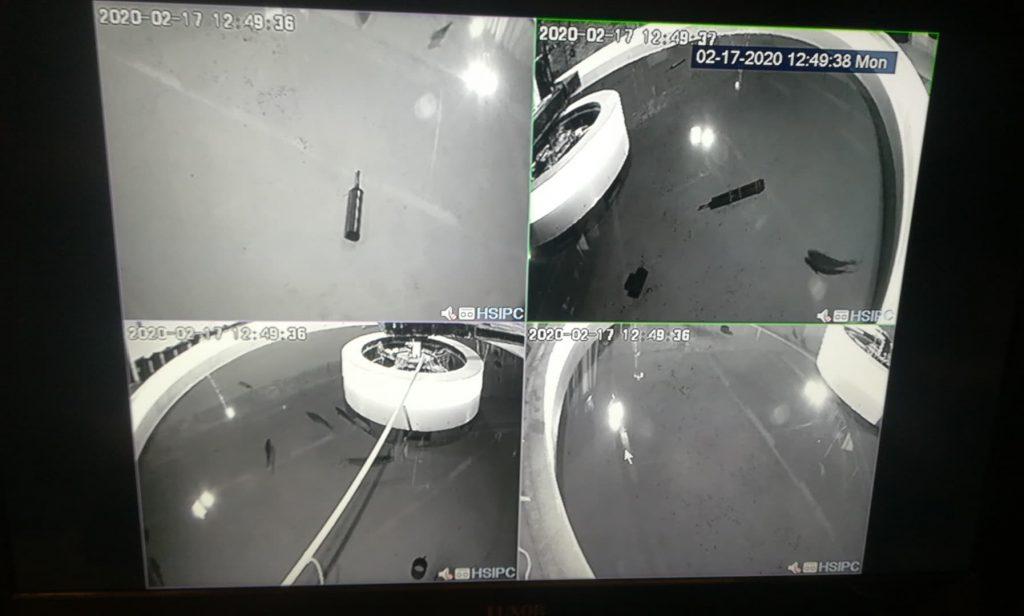 Fish Trials - four views on CCTV