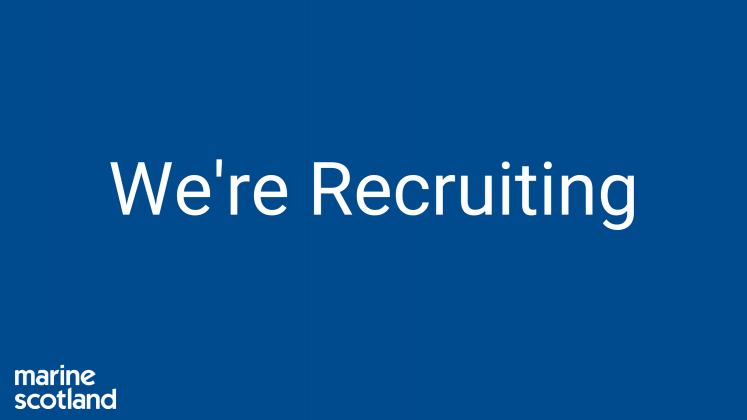 We're Recruiting Banner