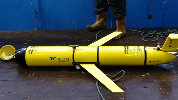Autonomous Underwater Vehicle (AUV)