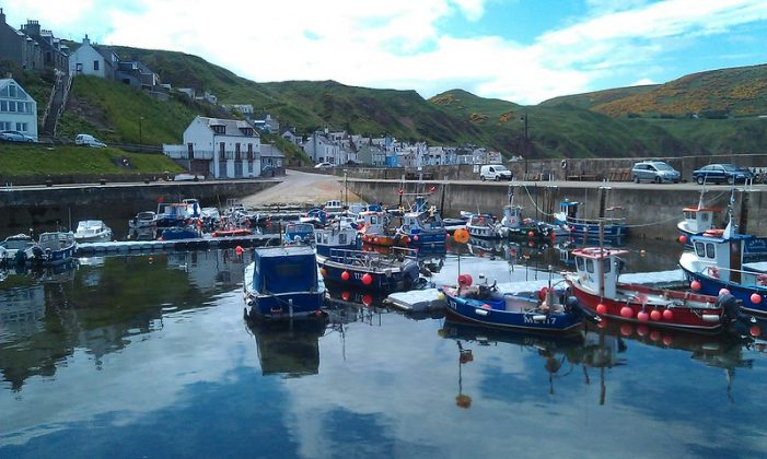60 crab boats at Gamrie (Gardenstown)