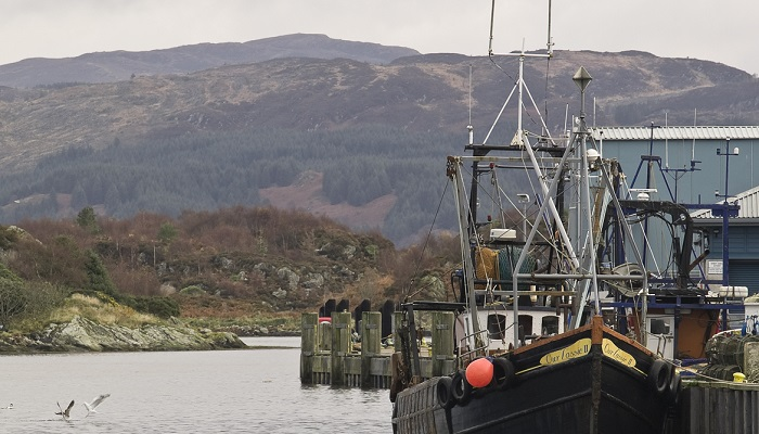 Fishing boats, Tarbert harbour. Argyll.__© George Logan / NatureScot