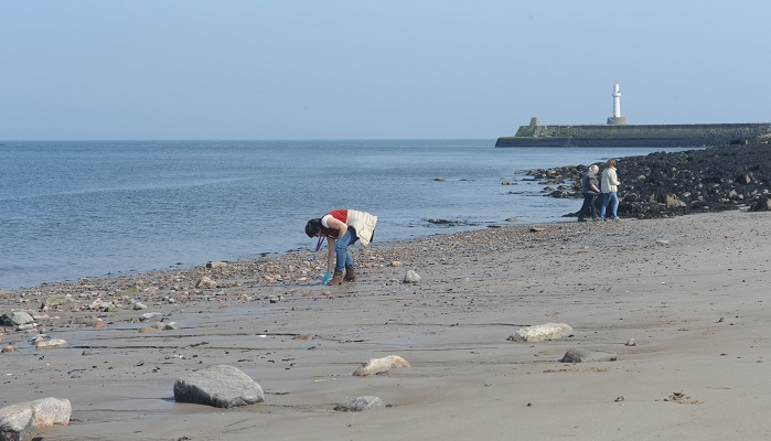 Colleagues collecting litter on an Aberdeen beach. Crown copyright