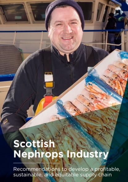 scottish nephrops industry report