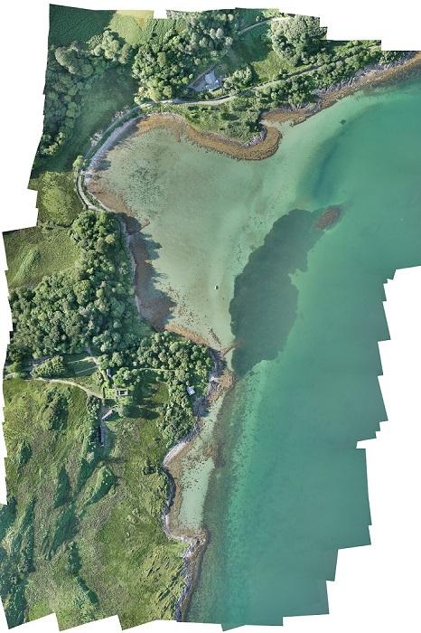 Project Seagrass - Loch Craignish