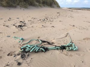 Discarded ropes on beach